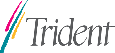 Trident Microsystems logo..png